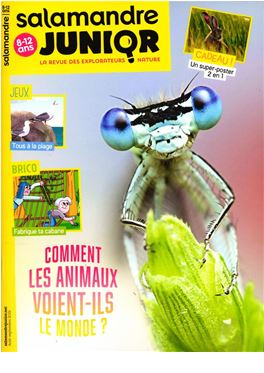 Abonnement Salamandre Junior magazine